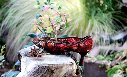 Garden Container Ideas 24 creative garden container ideas use tree stumps and logs as planters Offbeat Gardening 10 Creative Container Ideas