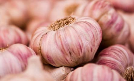 4 Healthy Reasons to Love Garlic