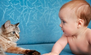 Do Pets Make Babies Healthier?