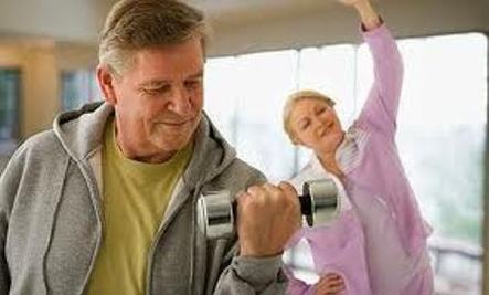 Researchers see promising results in treating age-related decline in muscle mass and power