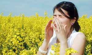 Allergies, Asthma, Climate Change--Oh My!