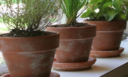DIY Antique Terra Cotta Pot