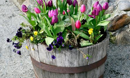 cute diy flower pot ideas - Flower Pot Ideas