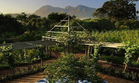 The World's Most Beautiful Greenhouse