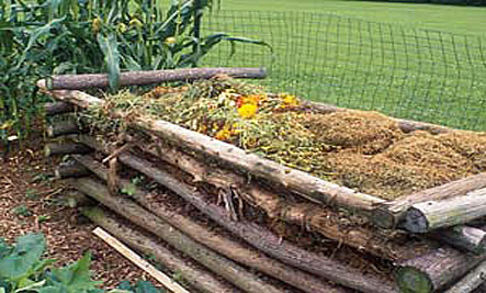 4 Easy Ways to Start Composting