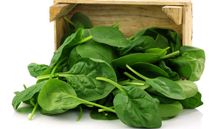 Lemony Steamed Spinach (Recipe)