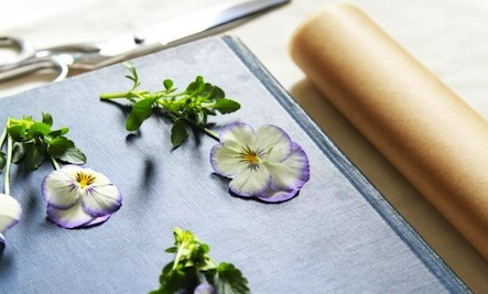 How to Make Beautiful, Pressed Flowers