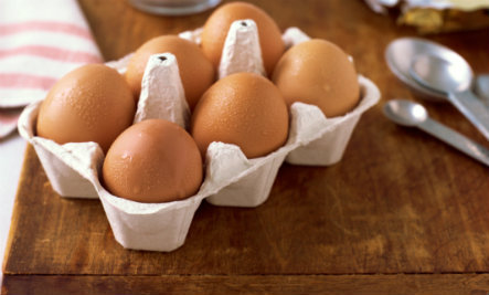 11 Surprising Uses for Egg Cartons