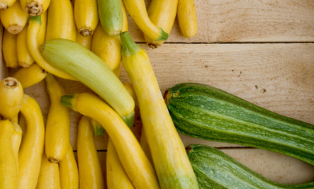 Summer Squash, Yogurt & Tahini Dip (Recipe)