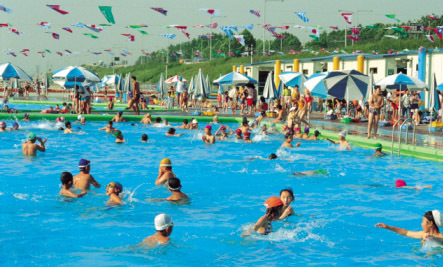 How Gross are Public Pools?