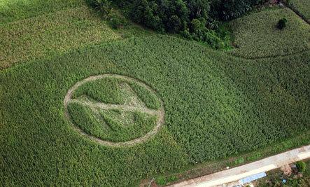 Monsanto Wins The World Food Prize