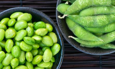 GMO Companies Launch Website to Explain Frankenfood