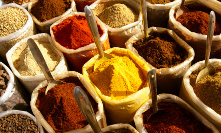 Salmonella in Your Spice Rack?