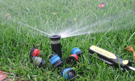 Plan Ahead for Spring: 8 Efficient Watering Tips