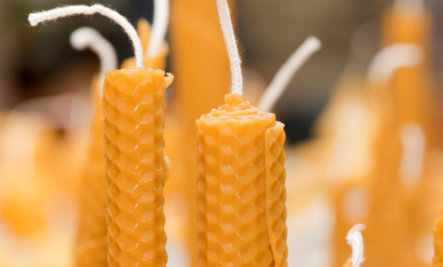 5 Reasons You Should Switch to Beeswax Candles
