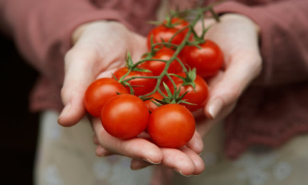 8 Ways Eating Tomatoes Keeps You Young