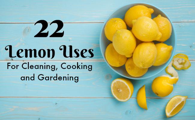 22 Surprising Uses for Lemons