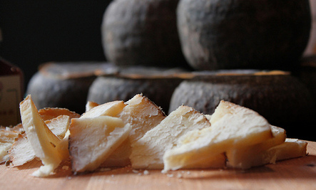 The World's Oldest Cheese is 3,600 Years Old