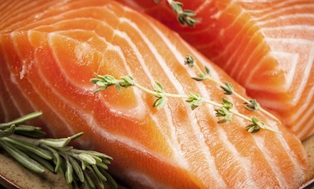 Genetically-Modified Salmon Insufficiently Tested for Safety