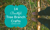 14 Beautiful Tree Branch Crafts