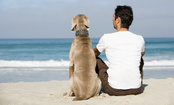 9 Ways Animal Friends Make Us Better Humans