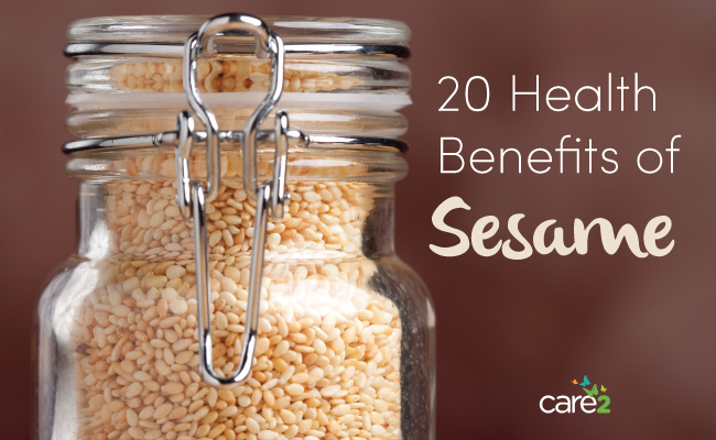 20 Huge Health Benefits Of Sesame | Care2 Healthy Living