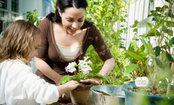 How to Plant a Garden in Any Space