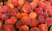4 Grocery Stores Recall Peaches & Plums