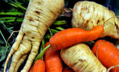 Ugly Fruits & Veggies: Why They Matter (Video)