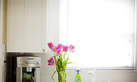 7 DOs & DON'Ts to Combat Kitchen Germs