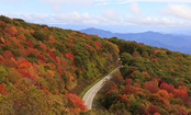 5 National Parks With Beautiful Fall Foliage
