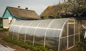 5 Greenhouses You Can Build Yourself