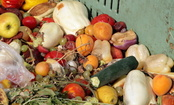 3 Reasons Supermarkets Waste So Much Food & What We Can Do About It