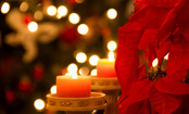 5 Ways to Deal With Holiday Grief