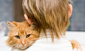 10 Ways Cats Show You Love