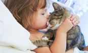 5 Reasons Cats Make You Feel Better