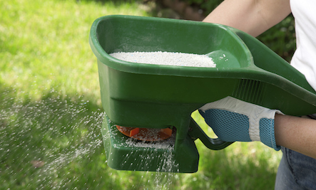 5 Chemicals in Lawn Fertilizer You Want To Avoid