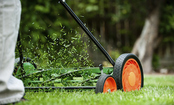 Best Non-Gasoline Powered Lawn Mower Options