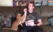 Daily Cute: Trying to Eat With a Cat Around
