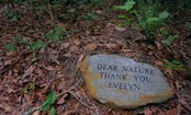 Dying to Be Green: The Green Burial Movement