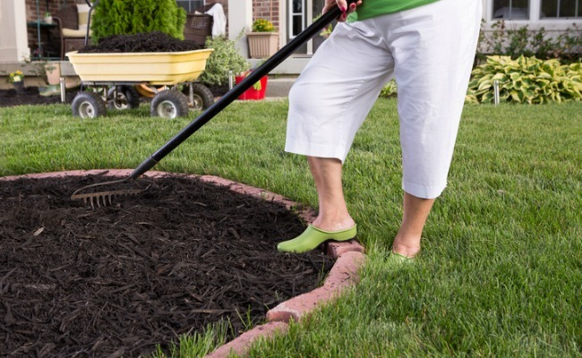 Which Type Of Mulch Is Best For Your Garden?