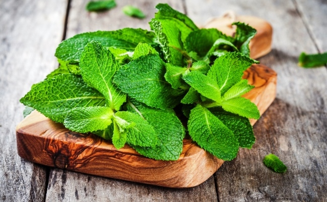 peppermint a powerful herb with 12 health benefits care2 healthy