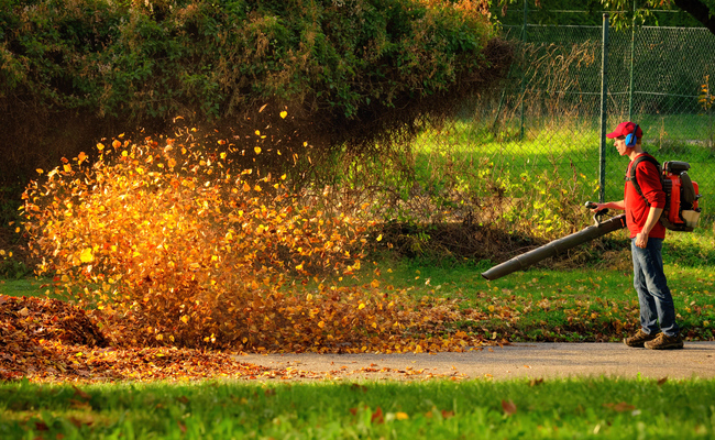 why you should ditch your leaf blower care2 healthy living