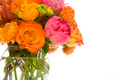 How to Keep Your Cut Flowers Fresh