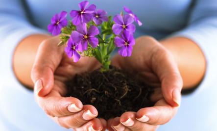 Ten Tips for a Simpler Spring