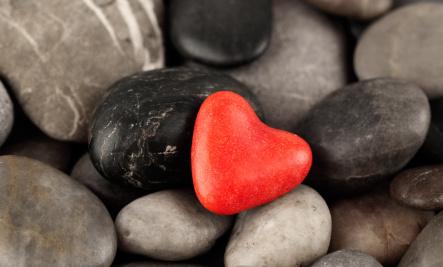 The Five  Essentials of Genuine Love