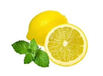 Make Citrus Mint Toner