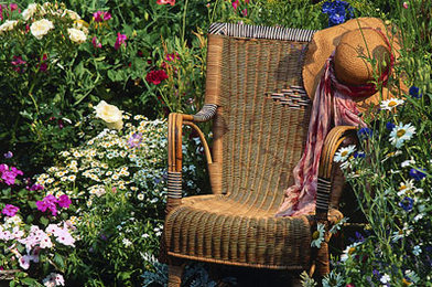 Your Guide to Cleaning Wicker