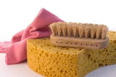 Green Bathroom Germ Cleaning Kit