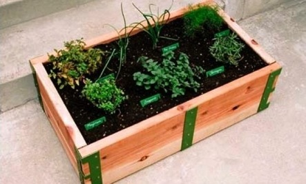 Outdoors: Raised Garden Beds at Scout Regalia in LA | Care2 ...